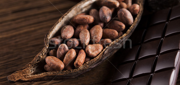 Cocoa pod and cocoa beans on the wooden table Stock photo © JanPietruszka