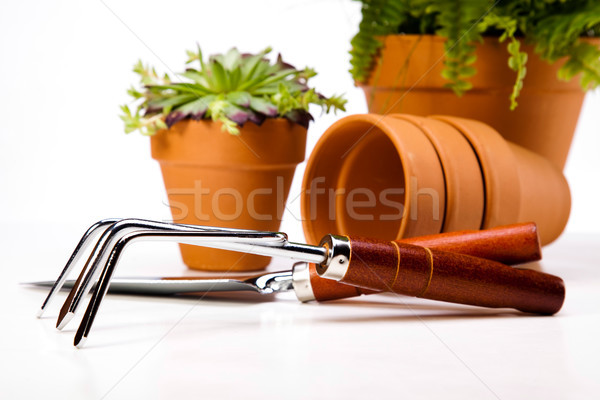 Gardening tools, vivid bright springtime concept Stock photo © JanPietruszka