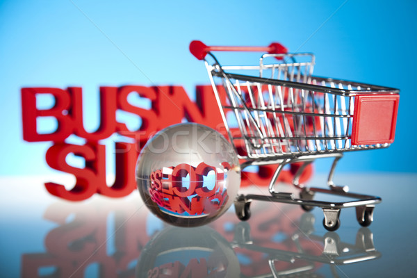 Shopping trolley, discount  Stock photo © JanPietruszka