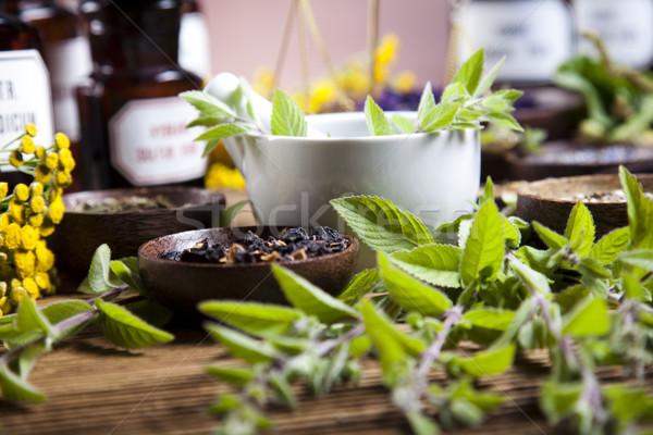 Naturalismo colorido natureza beleza medicina Foto stock © JanPietruszka