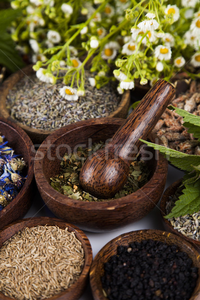 Herbal medicine, wooden table background Stock photo © JanPietruszka