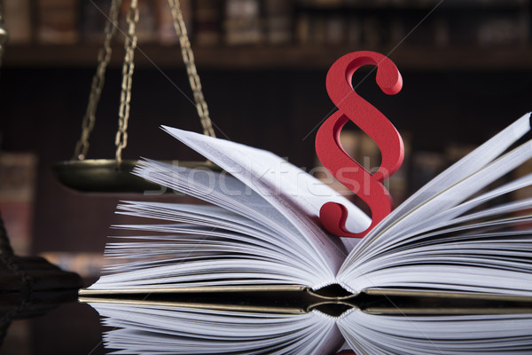 Book ,Law theme, mallet of judge Stock photo © JanPietruszka