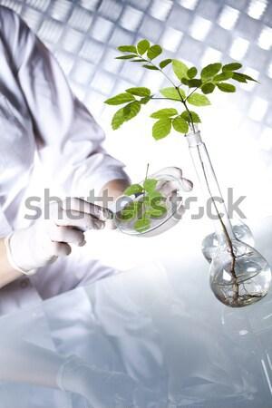 Chemical laboratory glassware equipment, ecology  Stock photo © JanPietruszka