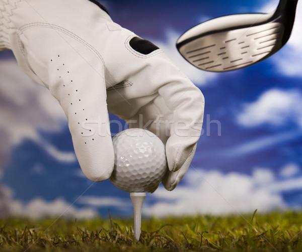 Golf ball on tee  Stock photo © JanPietruszka
