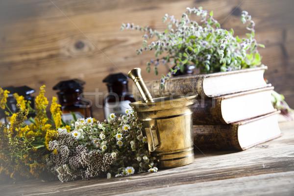Doğal tıbbi otlar doğa güzellik tıp Stok fotoğraf © JanPietruszka