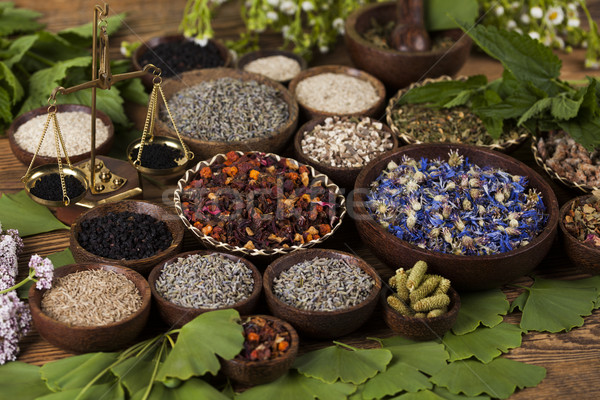 Medicina alternativa essiccati erbe naturale medici natura Foto d'archivio © JanPietruszka