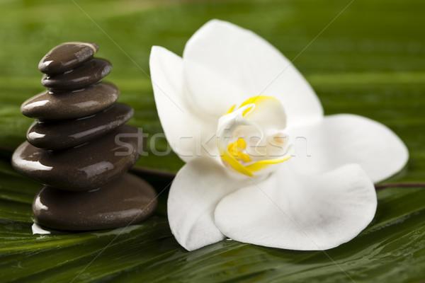 сбалансированный zen камней атмосфера группа Сток-фото © JanPietruszka