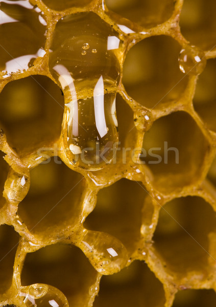 Méz vidéki bioélelmiszer méh citromsárga cukor Stock fotó © JanPietruszka