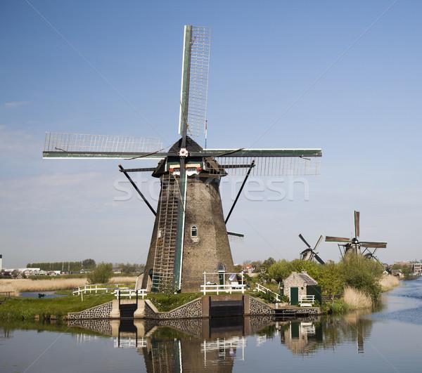 風車 オランダ オランダ語 空 草 夏 ストックフォト © JanPietruszka