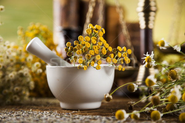 Book and Herbal medicine on wooden table background Stock photo © JanPietruszka