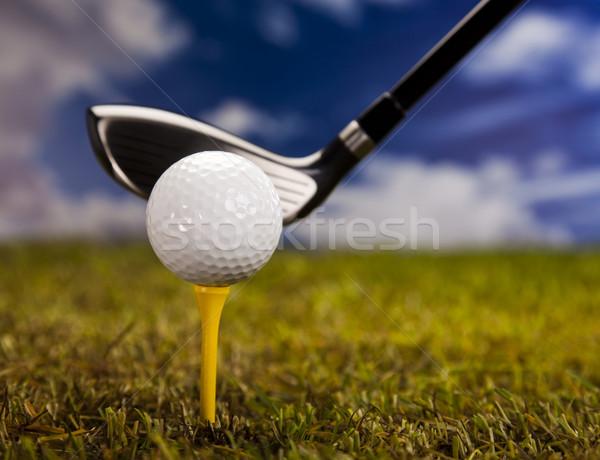 Oynama golf topu gün batımı çim yaşam tarzı çayır Stok fotoğraf © JanPietruszka
