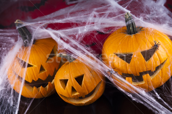 Halloween pumpkin Jack, spider web Stock photo © JanPietruszka