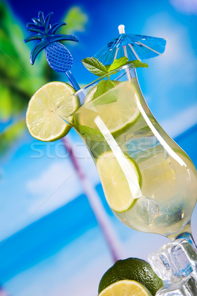 Vers mojito drinken exotisch kleurrijk blad Stockfoto © JanPietruszka