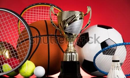Grupo equipamentos esportivos naturalismo colorido esportes futebol Foto stock © JanPietruszka