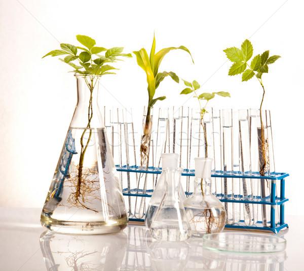 лаборатория изделия из стекла оборудование экспериментальный завода медицина Сток-фото © JanPietruszka