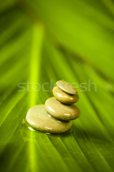 Still life, stone and zen, magical ambient atmosphere theme Stock photo © JanPietruszka