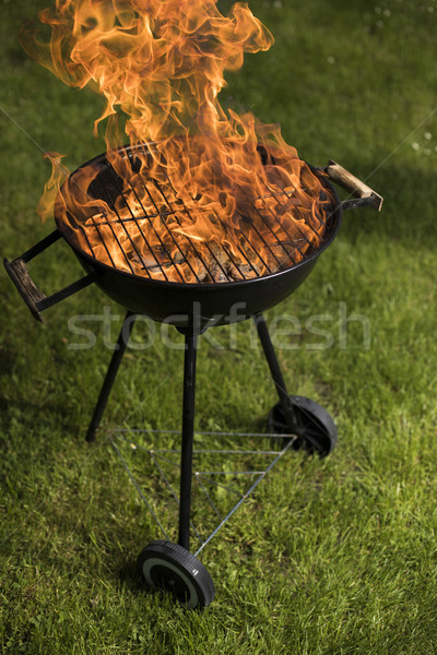 Grill with red hot briquettes, fire background Stock photo © JanPietruszka