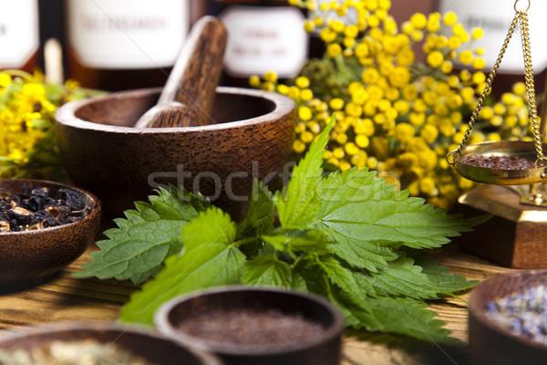 ストックフォト: 自然 · 医療 · ハーブ · 自然 · 美 · 薬