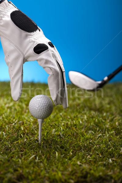 стороны мяч для гольфа закат газона жизни луговой Сток-фото © JanPietruszka
