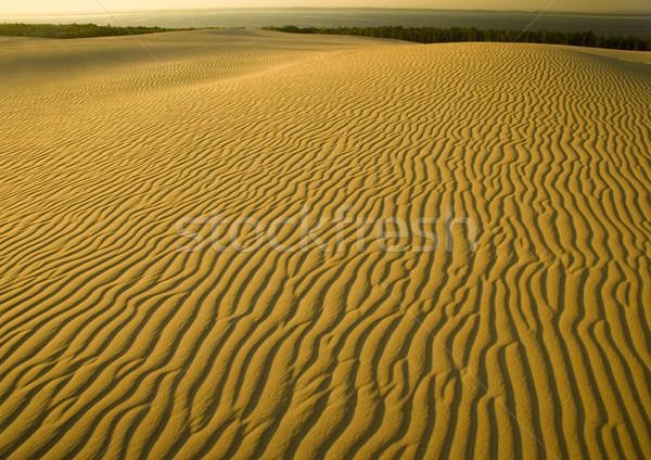 Kum doğa güzel manzara soyut Stok fotoğraf © JanPietruszka