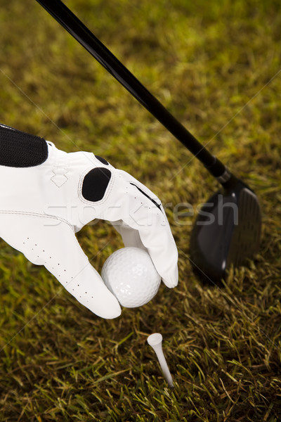 Golf tee  Stock photo © JanPietruszka