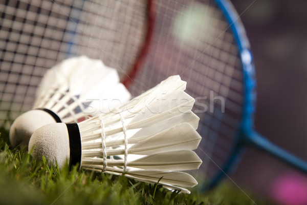 Badminton spor futbol yaz turuncu Stok fotoğraf © JanPietruszka