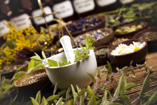 Natural medicine, herbs, mortar, natural colorful tone Stock photo © JanPietruszka