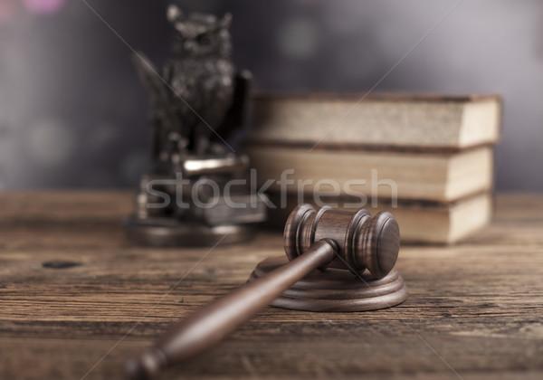 Lei coruja juiz gabela justiça martelo Foto stock © JanPietruszka