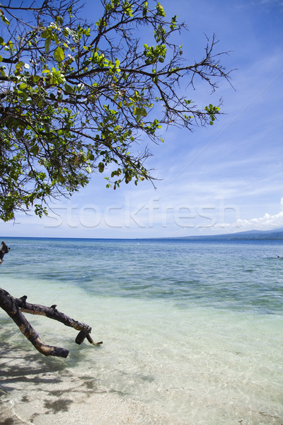 Sea and coastlines of Gili Air, Indonesia Stock photo © JanPietruszka