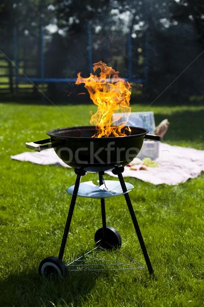 Biefstuk grillen zomer weekend heldere kleurrijk Stockfoto © JanPietruszka