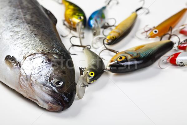 Halászat természetes étel természet folyó légy Stock fotó © JanPietruszka