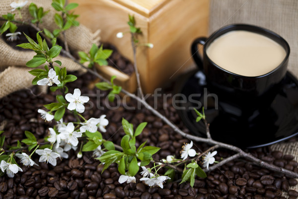 伝統的な コーヒーカップ 豆 テクスチャ 食品 フレーム ストックフォト © JanPietruszka