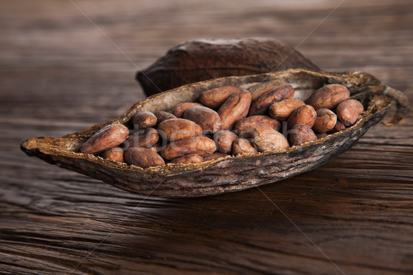 Cocoa pod on wooden table Stock photo © JanPietruszka
