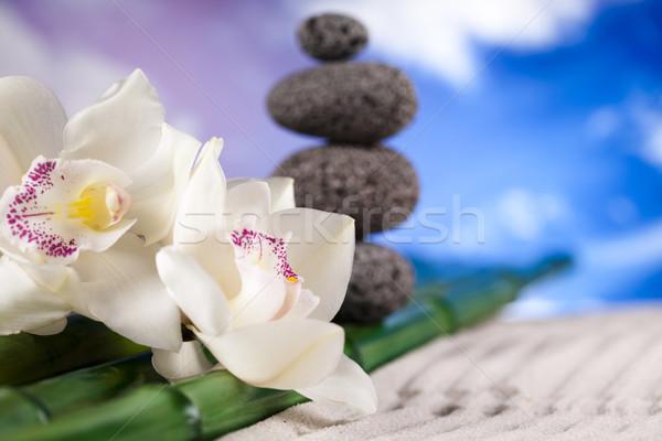 Orkide çiçek zen taşlar grup kaya Stok fotoğraf © JanPietruszka