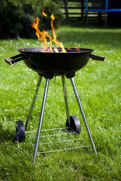 Koken barbecue heldere kleurrijk levendig voedsel Stockfoto © JanPietruszka