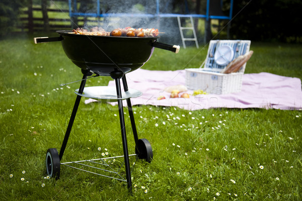 Cooking on the barbecue grill, bright colorful vivid theme Stock photo © JanPietruszka
