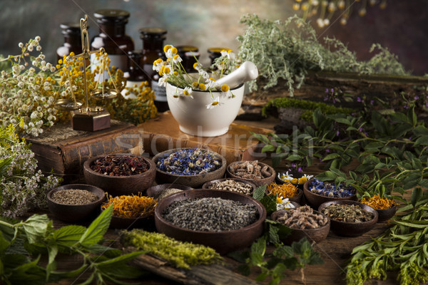 Assorted natural medical herbs and mortar on wooden table backgr Stock photo © JanPietruszka