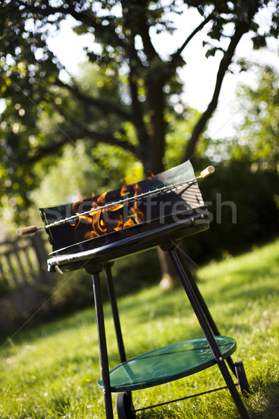 Grill flame, hot burning grill Stock photo © JanPietruszka