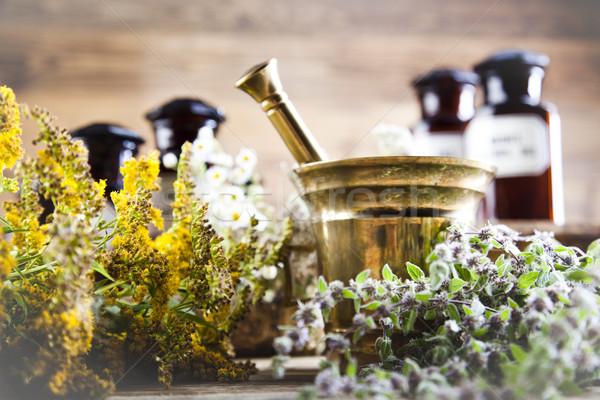 Fresh medicinal herbs on wooden desk Stock photo © JanPietruszka