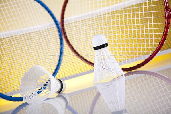Badminton racket zomer leuk veer bal Stockfoto © JanPietruszka