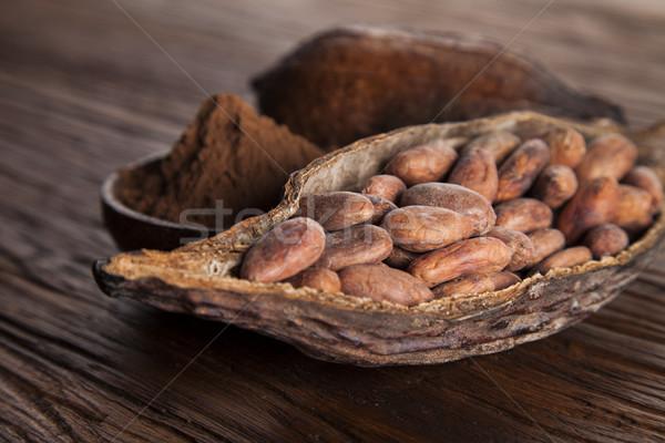 Kakaóbab száraz hüvely gyümölcs fából készült kakaó Stock fotó © JanPietruszka