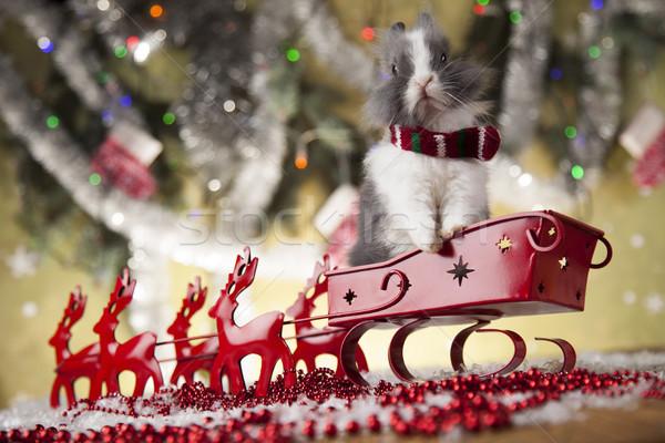 Santa sleigh on gift box background Stock photo © JanPietruszka
