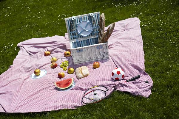 пикника трава весна красочный яркий весны Сток-фото © JanPietruszka