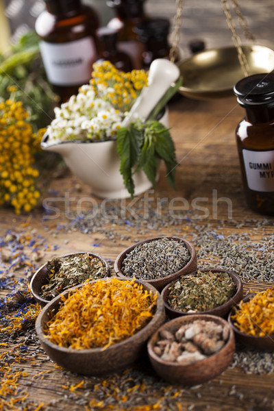 Herbs, berries and flowers with mortar, on wooden table backgrou Stock photo © JanPietruszka