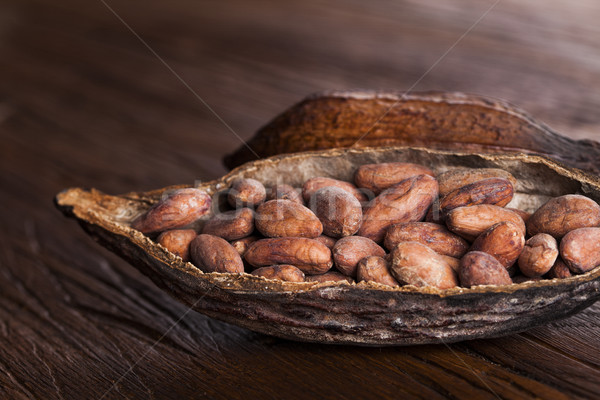 Cocoa pod on wooden background Stock photo © JanPietruszka