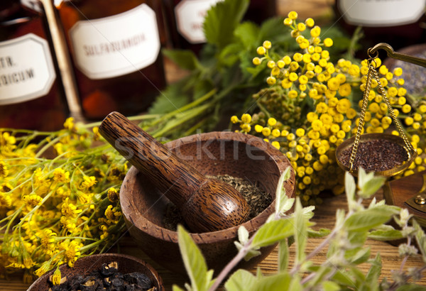 Foto stock: Naturalismo · médico · ervas · natureza · beleza · medicina