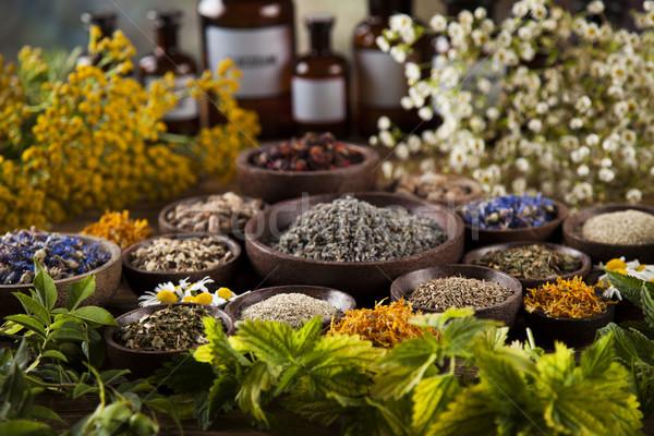 Hierbas medicina vintage escritorio Foto stock © JanPietruszka