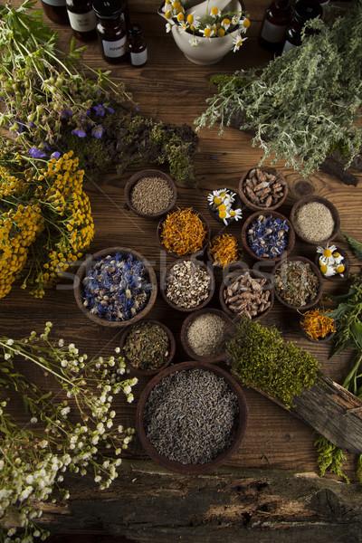 Alternative medicine, dried herbs and mortar on wooden desk back Stock photo © JanPietruszka