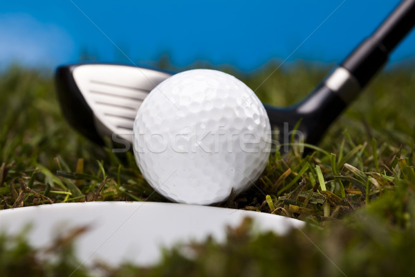 гольф клуба закат газона жизни луговой Сток-фото © JanPietruszka