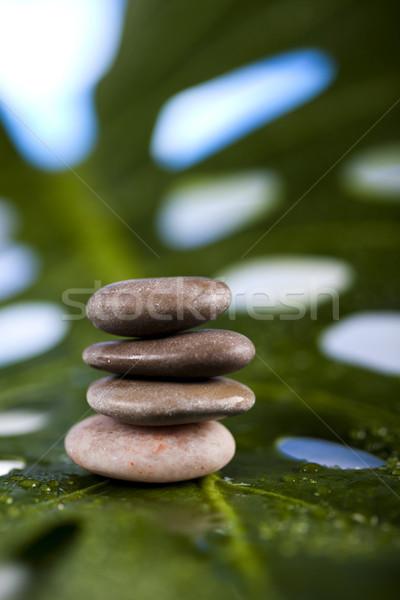 Kiegyensúlyozott zen kövek csoport kő pihen Stock fotó © JanPietruszka